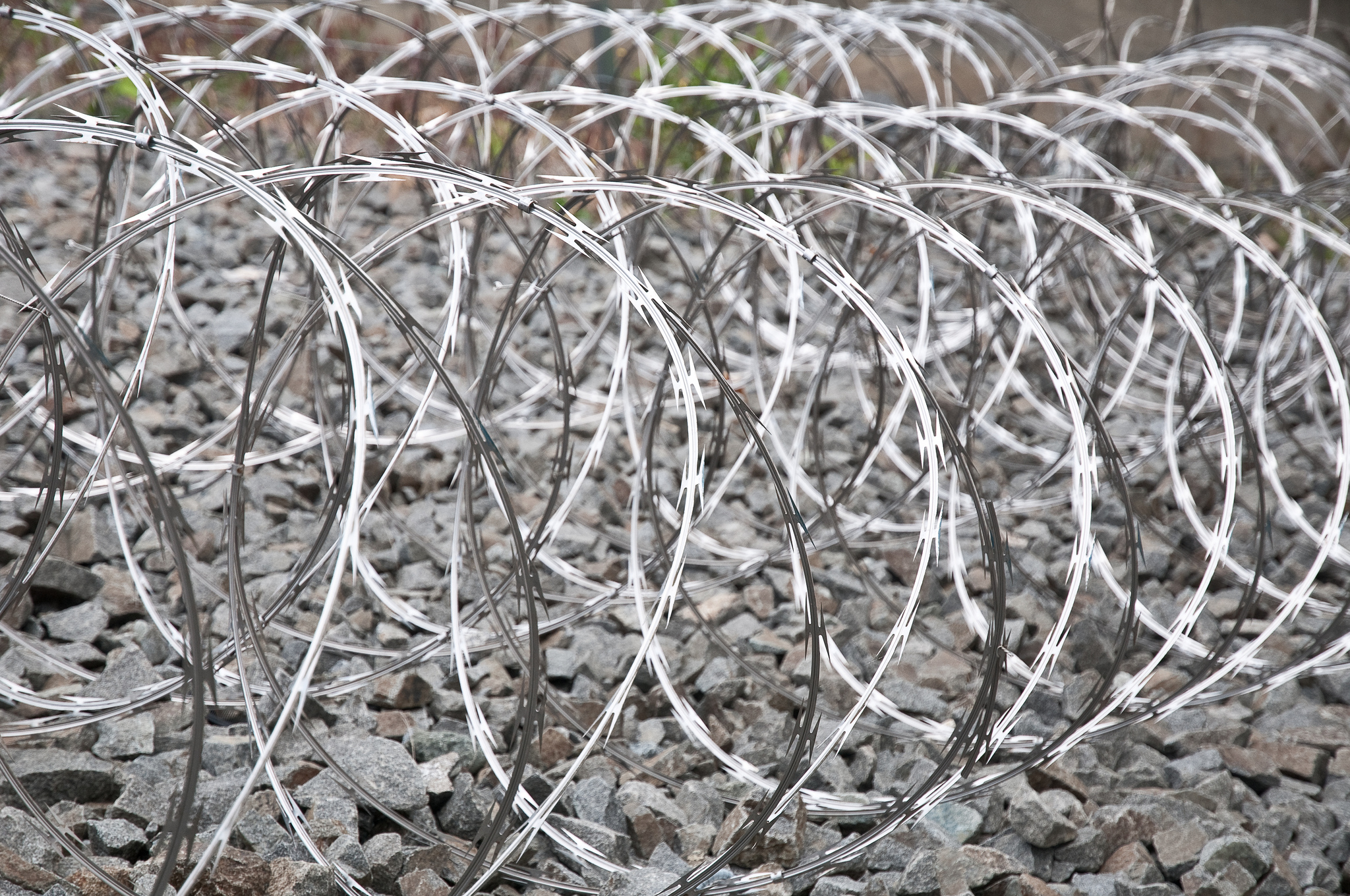 barbed wire on ground